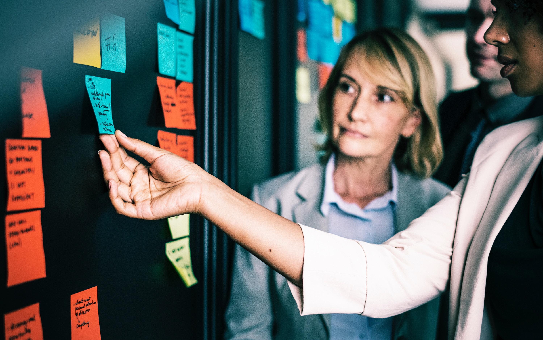 Coaching & Mentoring - gedragsverandering werknemers